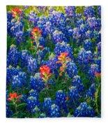 Texas Colors Fleece Blanket