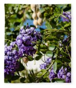 Texas Mountain Laurel Sophora Flowers And Mescal Beans Fleece Blanket