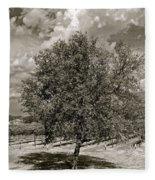 Texas Winery Tree And Vineyard Fleece Blanket