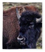 The American Bison Fleece Blanket