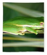 The American Green Tree Frog Fleece Blanket