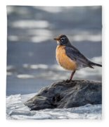 The American Robin Square Fleece Blanket