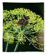 The American Snout Butterfly Fleece Blanket