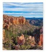 The Amphitheater At Farview Point Fleece Blanket