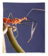Garden Assassin Bug Fleece Blanket