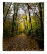 The Back Roads Of Autumn Fleece Blanket