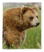 The Bear Dry Brushed Fleece Blanket