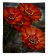 The Beauty Of Red Fleece Blanket