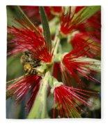 The Bee And Bottlebrush Fleece Blanket