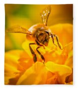 The Bee Gets Its Pollen Fleece Blanket