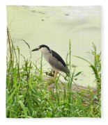 The Black-crowned Night Heron Fleece Blanket