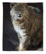 The Bobcat Fleece Blanket
