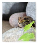 The Bronze Frog Fleece Blanket