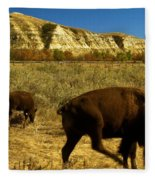 The Buffalo Dance Fleece Blanket
