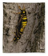The Bug Fleece Blanket
