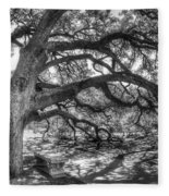 The Century Oak Fleece Blanket