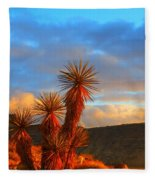 The Cerbat Foothills Fleece Blanket