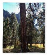 The Chapel Yosemite Fleece Blanket