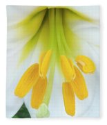 The Christmas Lilly Fleece Blanket
