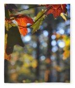 The Colors Of Fall Fleece Blanket