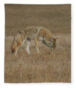 The Coyotes Fleece Blanket