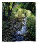 The Creek At Finch Arboretum Fleece Blanket