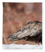 The Crow And Vulture Fleece Blanket
