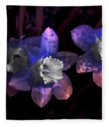 The Daffodil Trio Fleece Blanket