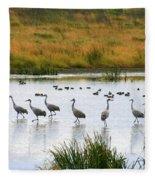 The Dance Of The Sandhill Cranes Fleece Blanket