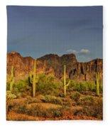 The Desert Aglow Fleece Blanket