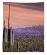 The Desert Beckons  Fleece Blanket