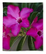 The Desert Rose  Fleece Blanket