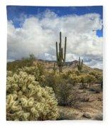 The Desert Southwest Fleece Blanket