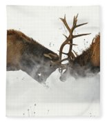 The Duel Of Fighting Elk Fleece Blanket