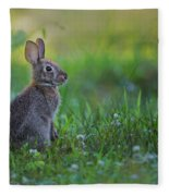 The Eastern Cottontail Fleece Blanket