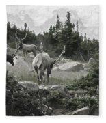 The Elk Painterly 2 Fleece Blanket