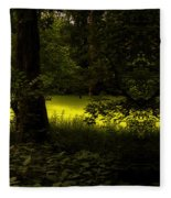 The End Of The Path Mirror Image Fleece Blanket