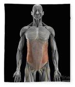 The External Oblique Muscles Fleece Blanket