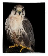 The Falcon Fleece Blanket