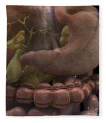The Gallbladder And Stomach Fleece Blanket