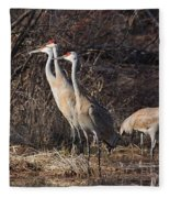 The Gathering...sandhill Cranes Fleece Blanket