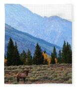The Grand Scheme Fleece Blanket