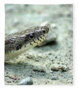 The Gray Eastern Rat Snake Right Side Head Shot Fleece Blanket