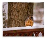 The Grey Squirrel George In Winter Fleece Blanket
