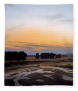 The Grosse Gehege Near Dresden Fleece Blanket