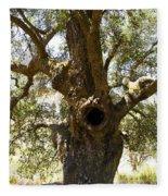 The Hole Tree Santa Margarita Lake Fleece Blanket