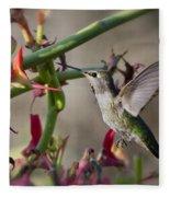 The Hummingbird And The Slipper Plant  Fleece Blanket