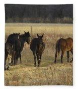 The Jackasses Fleece Blanket