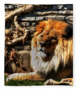 The King Lazy Boy At The Buffalo Zoo Fleece Blanket