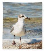 The Laughing Gull Strut Fleece Blanket